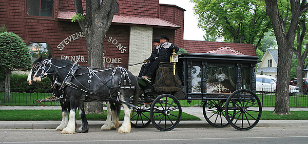 Clydesdales_2_600w